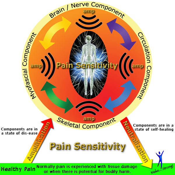 pain sensitivity amplifiers